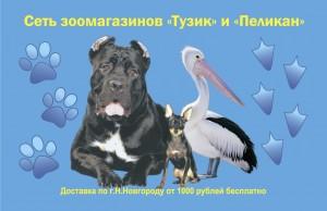 Тузик_кривые